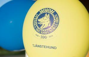 Ballonger i gult och blått med jubileumslogga prydde klubbhuset.