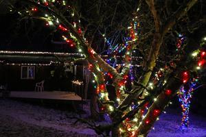 Vardera familj har sådär 2,5 kilometer ljusslingor i trädgården. En hel del får sitta upp från år till år.