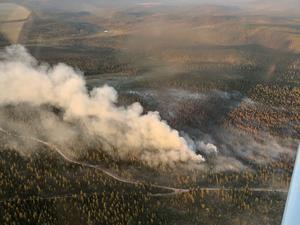 Skogsbranden vid Trängslet i Älvdalen.Foto: Peter Wicander.