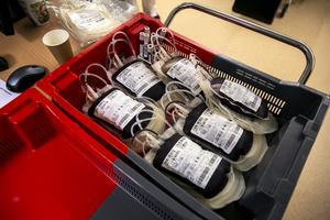 Så här ser blodet ut när det tappats på blodcentralen. Men hit kommer aldrig Richards blod – det kastas.