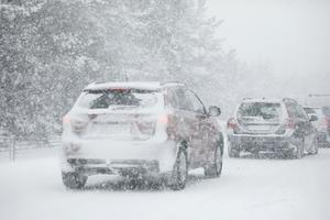 Under måndagsförmiddagen väntas snöfallet återigen intensifieras i länet. Foto: Christine Olsson /TT