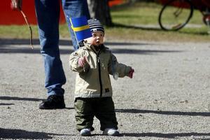 Ludvig Eklund, ett år, viftade glatt med blågula flagga.