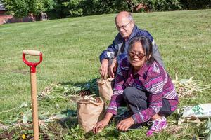 Nidia Åman och Calle ser fram emot att plantera tulpanlökarna från Vasaparken.