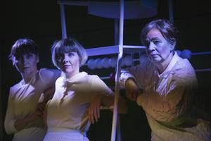 Linda Birgersson, Anna Granquist och Susanne Hellström är också med i pjäsen.