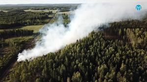Skogsbranden utanför Jularbo i Avesta kommun skapar trafikstörningar då röken lägger sig över intilliggande riksväg 68. Foto: Stefan Johansson