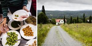 Göte Nordmar undrar hur mycket en jullunch kan betyda för de anställda, och framhåller att invånarna på landsbygden är de som verkligen skulle behöva en julgåva. Bilder: Robin Haldert/TT / Karin Rickardsson