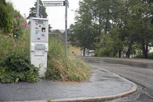 I korsningen Mariekällgatan–Fridhemsgatan är det inte lätt att se trafiken som kommer från vänster på Mariekällgatan. Hög vegetation och en parkeringsautomat skymmer sikten.