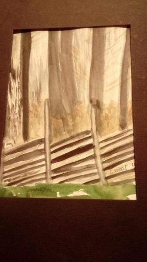 Skogen mörk och grå stå och vila i väntan på vår. Av Carina i Hallstahammar.