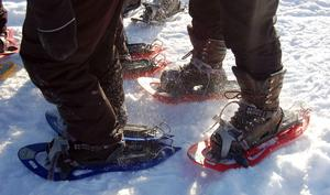 Snöskogång eller -löpning har visat sig vara en spännande och bra motionsform för många människor. även personer med någon form av funktionsvariation.