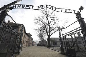 """För 75 år sedan mördades 3000 romer som hade förts samman i det som kallades """"zigenarlägret"""" i Auschwitz-Birkenau. FOTO: Michael Sohn"""