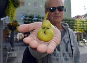 Lasse Björnhager kan inte äta upp sin pärongubbe.