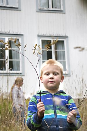 Sonen Alfred som fyller fem i december har redan gjort sig hemmastadd på gården och utsett sitt kommande rum.