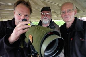 2008 presenterades nyheten om Berguvskameran vid Falu gruva av Conny Trogen (till vänster, Dalarnas ornitologiska Förening), Kalle Bergström (mitten, Falu Fågelklubb) och Daniels Sven Olsson, f.d chef vid Falu Gruva.