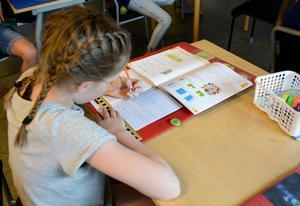 I Gottne skola är de 44 eleverna uppdelade på två klasser, F-3 och 4-6. I Edsele skola däremot är de 20 eleverna uppdelade på tre klasser med cirka 6 elever per klass. De planerar att slå ihop till två klasser framöver.