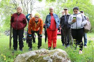 Intresse fanns för de ätliga (nåja) Vinbergssnäckorna på stenen vid naturvandringen i Kvarntorpsområdet.