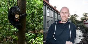 Hobbyfotografen Jens Söderlund reste till Borneos djungler för volontärarbete både på ett björncenter och i regnskogen.