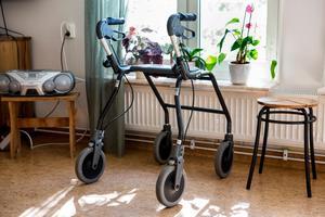Många äldre runt Svärdsjö bor ensamma i stora hus med ansvar som tynger,  enligt Pensionärsorganisationen PRO Svärdsjö.  Föreningen vill nu se fler lägenheter för äldre. Foto: Christine Olsson, TT