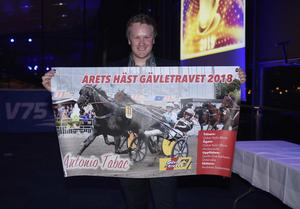 Årets Häst Antonio Tabac. Foto:Christer Norin/ALN