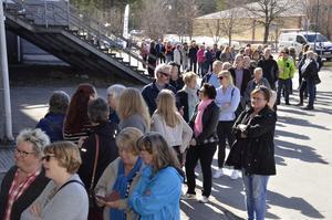 Köerna ringlade sig långa till NHK-arena och Medelpads tärdgårdsmässa i fjol. Foto: Maria Spring