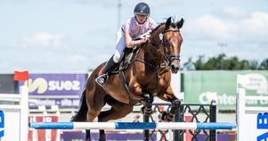 Denise Svedberg och Jobelle har ett riktigt succéår bakom sig, med kval till svår hoppning, SM och Jönköping Horse Show.