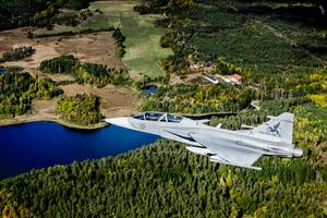 Karlsborgs flygplats har varit bas för flygvapnet. Nu ska området renas från PFAS-utsläpp. Foto: Magnus Hjalmarson Neideman/TT
