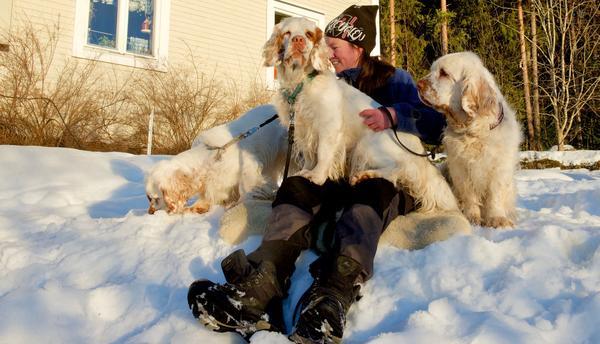 – Jag tycker om massiva hundar. Därför blev det den här spanielrasen, säger Marie Löfqvist.