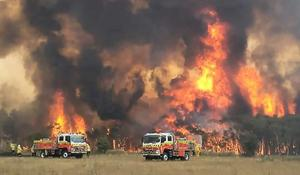 Nödläge utlyst i brandhärjade Australien