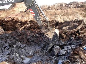 Saneringen blev en kostsam affär för Skutskärs Hamn & Logistik.Två meter under markytan låg oljeavfallet, täckt av bark och jord. Tusentals ton fick grävas upp.