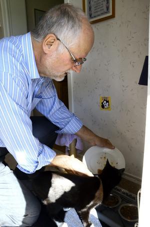 Inget förfars. Matavfall existerar inte hemma hos Kenneth Johansson. Det som inte han eller dottern äter upp tar katterna.