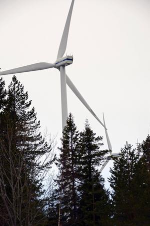 Vindkraft eller inte vindkraft, det är frågan.