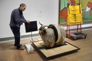 Kaj Thuresson från Riksantikvarieämbetet förbereder geten för en röntgenundersökning. I bakgrunden skymtar en målning av Francis Bacon som delar rum med