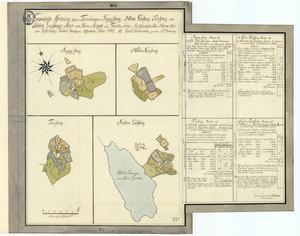 I sommar kommer Finnmarkens historiegrupp att ordna turer till några av de gamla finnbosättningarna. Kartan visar fyra av dem, de gamla finntorpen Ryggskog, Tenskog samt norra och södra Losskog från 1742.