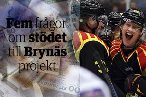 Elitstöd, privatisering av ungdomsverksamhet eller bra för barnen. Frågan om 12 miljoner till Brynäs väcker frågor.