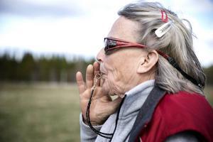 Yvonne Karlberg använder sig av visselpipa och kommandon på engelska i vallningen.