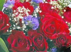 Ett vackert blomsterfång till maj månads storjubilarer i länet.