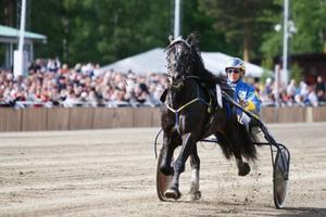 """Jan-Olov Persson var rörd efter segern med Järvsöfaks. """"Jag har funderat på vad jag har gjort för något gott för att få fram en sådan här häst. Att springa 1.21 över medelsdistans på det viset... han sprang bara och klippte med öronen till slut"""" sa Persson."""