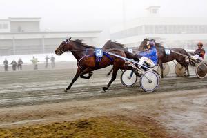 Francais Du Gull och Erik Lindegren vann dagens treåringslopp.