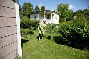 Tillväxt. Anna-Lena Mrini funderar på var den nya plantan ska vara i trädgården.