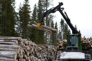 Snabb bredbandsuppkoppling är viktigt inom skogsnäringen.