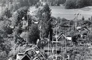 Svenska flaggans dag 1978.