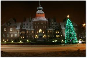 Rådhuset i vinterljus.