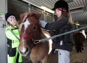Ponnyn Villiam borstas av Emma Jonsson och Elin Skoglund.