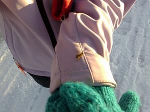 Idag Fredagen den 20/1 2012 var jag och min man ute och gick. Det var soligt och kallt vinterväder -5 grader och vi hitta detta lilla bi som låg i snön.