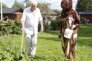 Lars Eliasson och hans fru Gullan Eliasson hjälper Hibo Rooble i kontakten med myndigheterna och med det svenska språket. I parets trädgård har hon egna potatisplantor.