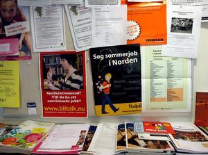 Jobben finns i Norge, men långt ifrån alla unga arbetslösa vill jobba där.
