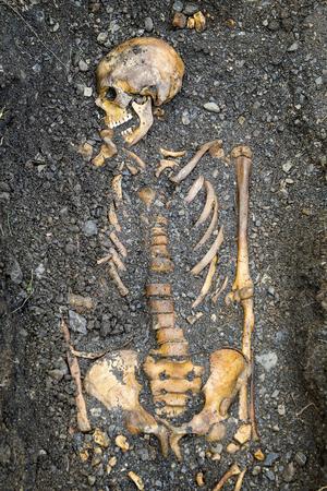 De flesta skelettfynden är kompletta kroppar som ligger omlott.