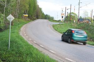 Många vittnar om vildsvin, som kan utgöra trafikfara, längs Ängelsbergsvägen.