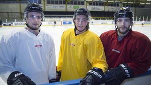 Anthony Gardner, John Bentley och Shaun Lymer är spelklara.
