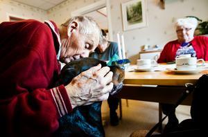 I Örebro finns vårdhunden Tilda som är med i dagvård på Demenscentrum, Mellringe, och Tuleträffen vid Brolyckan. Gunnar Molin och Eva Bengtsson, på Demenscentrum, tycker om när Tilda är nära.