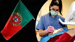 Folktandvårdens satsning på att hämta hit arbetskraft från Portugal har slagit väl ut och nu funderar på en repris.